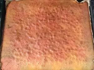 fertig gebackener Papgeienkuchen